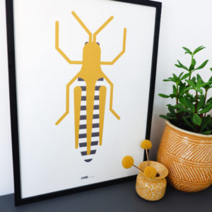 Poster Insect Krekel ANNIdesign 01